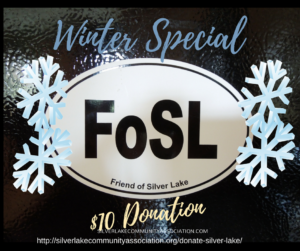 FOSL Car Magnet